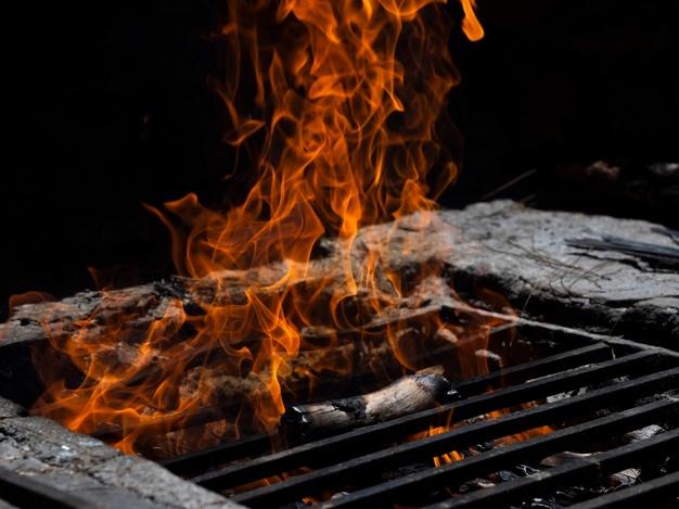 Žari – plinski, električni, na oglje